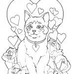 Katze 12