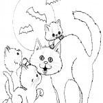 Katze 15