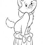 Katze 20