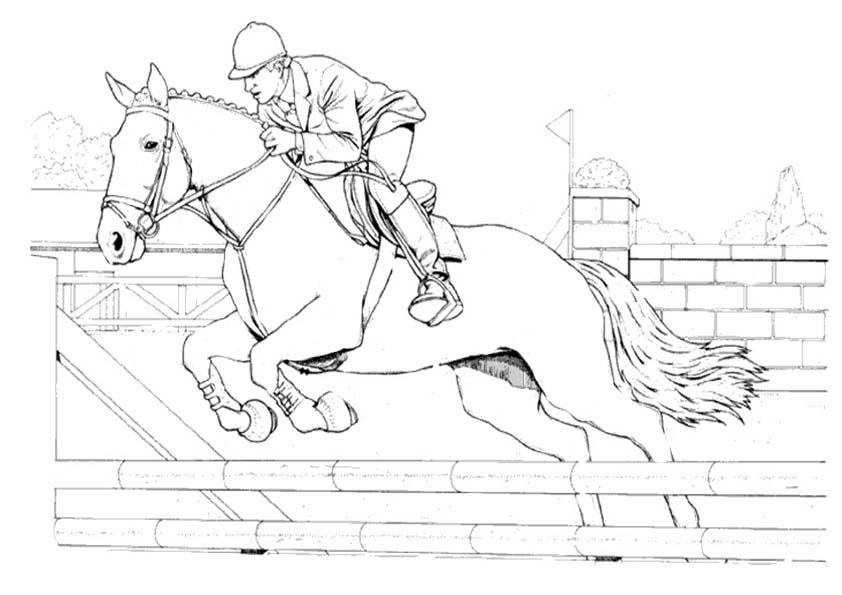 ausmalbilder malvorlagen ausmalen  pferde 20
