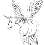 Pferde 25-Einhorn