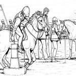 Pferde 31