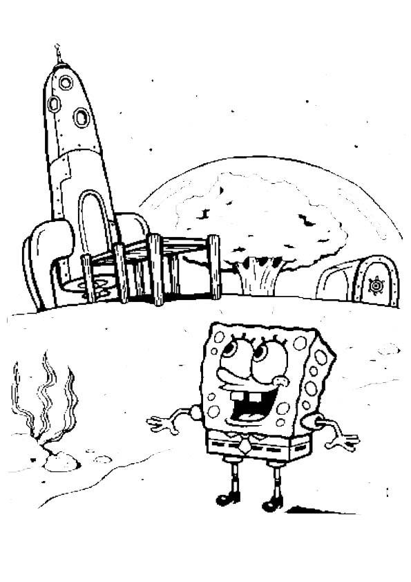 sponge bob 29