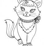Katzen-26
