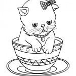 Katzen 33