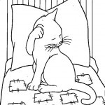 Katzen-47