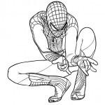 spiderman-22