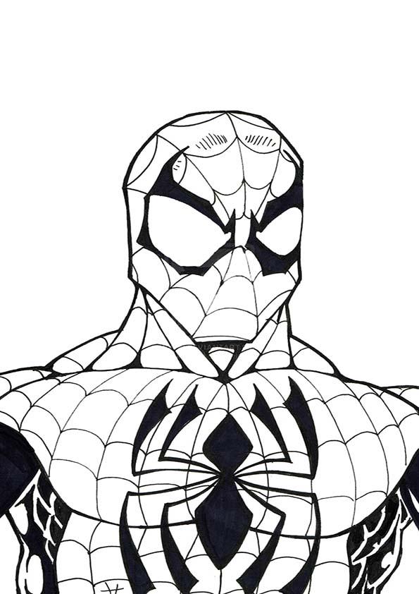 Malvorlagen ,Ausmalbilder, Spiderman-28