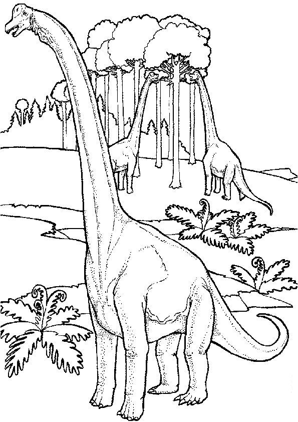 Ausmalbilder Dinosaurier 8