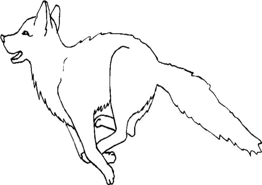 Ausmalbilder Wolf