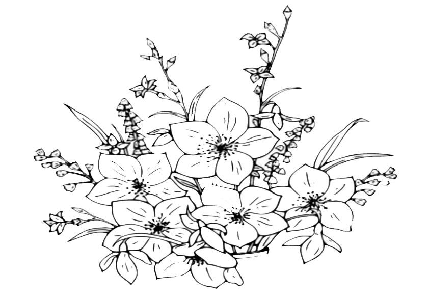 Ausmalbilder Blumen 24 Ausmalbilder Malvorlagen