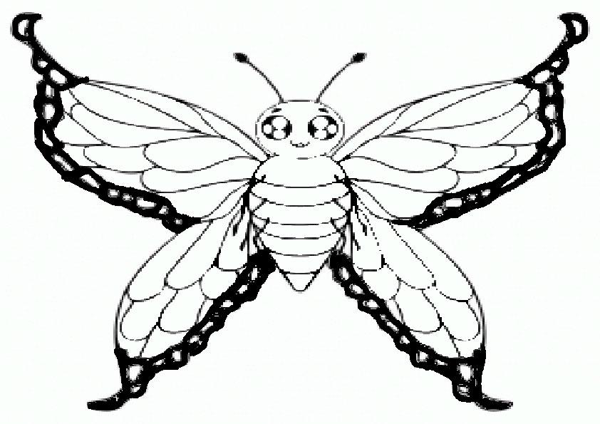 Ausmalbilder Schmetterling-18
