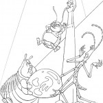 Das grosse krabbeln-8