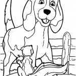 Hunde-10