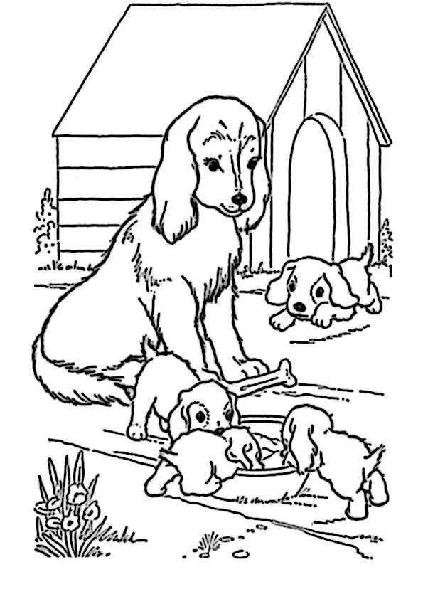 hunde ausmalbilder-14
