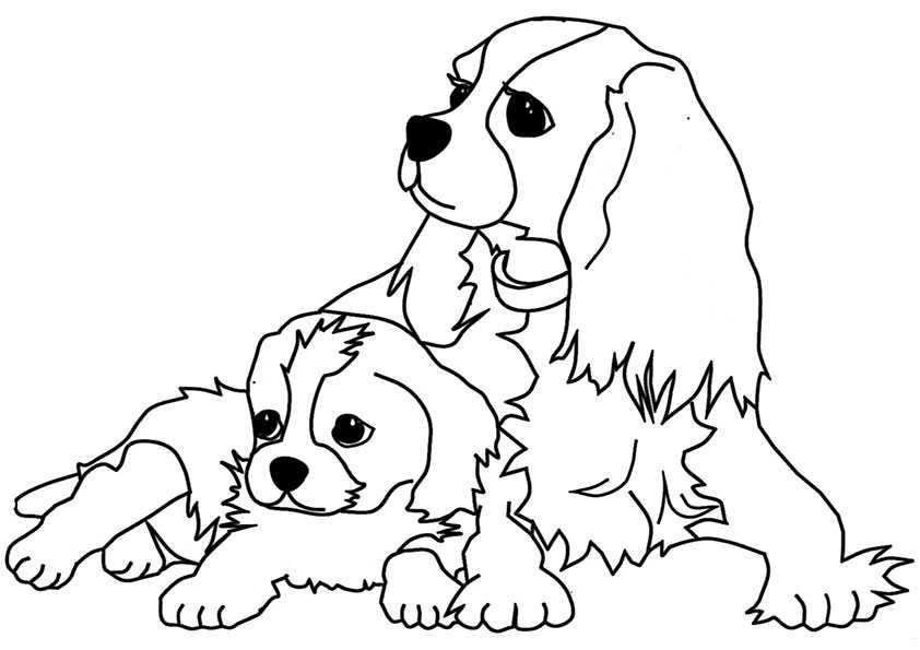 ausmalbilder hunde-2