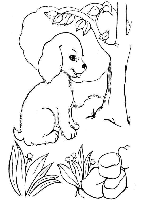 hunde ausmalbilder -20