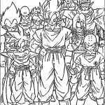Dragon ball-4