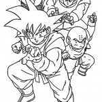 Dragon ball-6
