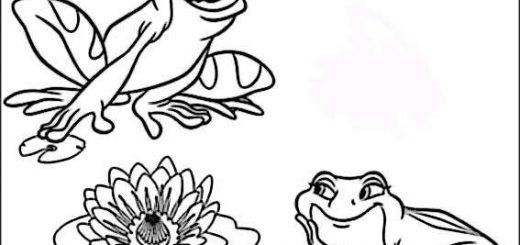 frosch ausmalbilder-10