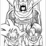 Dragon ball-20