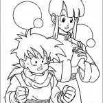 Dragon ball-22