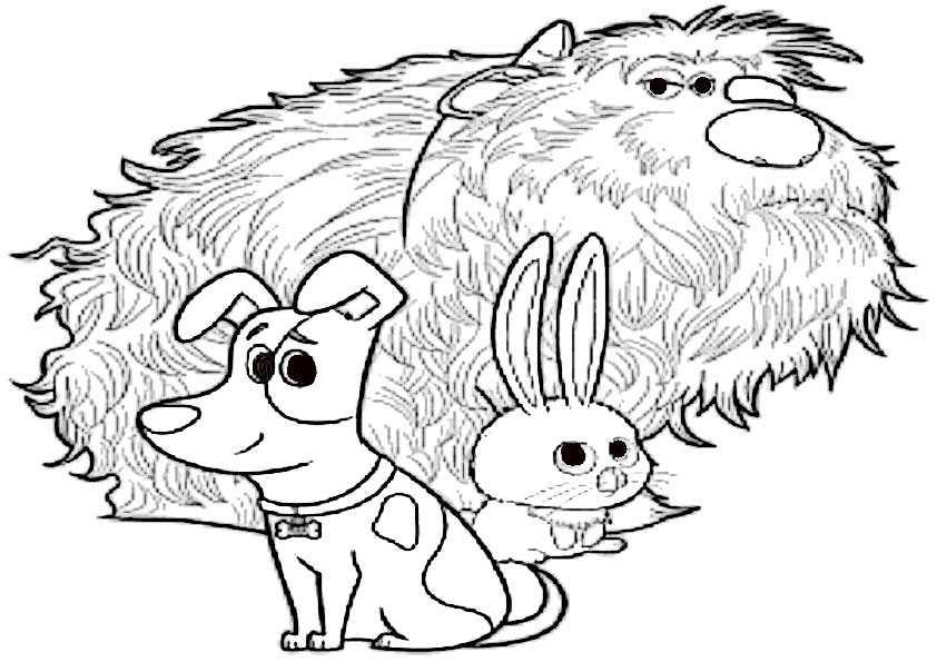 ausmalbilder pets-9